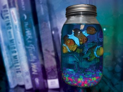 Mason Jar Aquarium