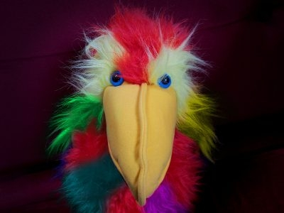 Parrot Story/Craft