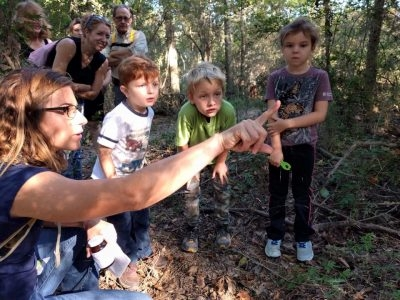 Raising Nature Explorers & Bioblitz!