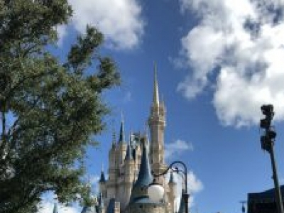 Disney Rookies: Should We Book a Trip?